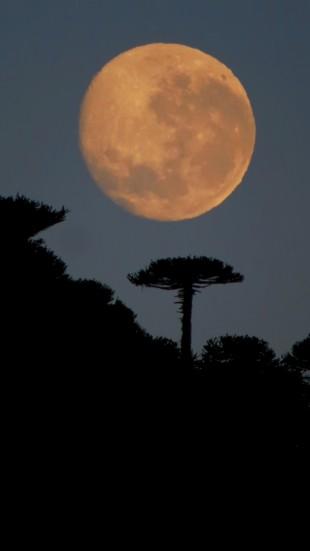 Luna llena en Caviahue (6)